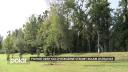 Prioritou je bezpečnost lidí. Povodí Odry pokácí 19 poškozených stromů kolem Ostravice