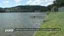 Smrtelná infekce napadla kapry v Petrově rybníce v Krnově. Všechny ryby musí být likvidovány